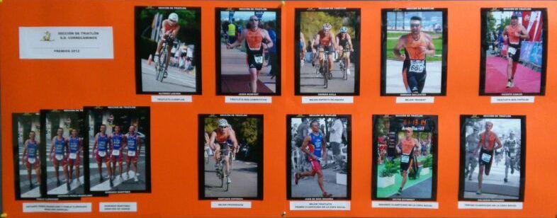 panel_triatlon (Demo)