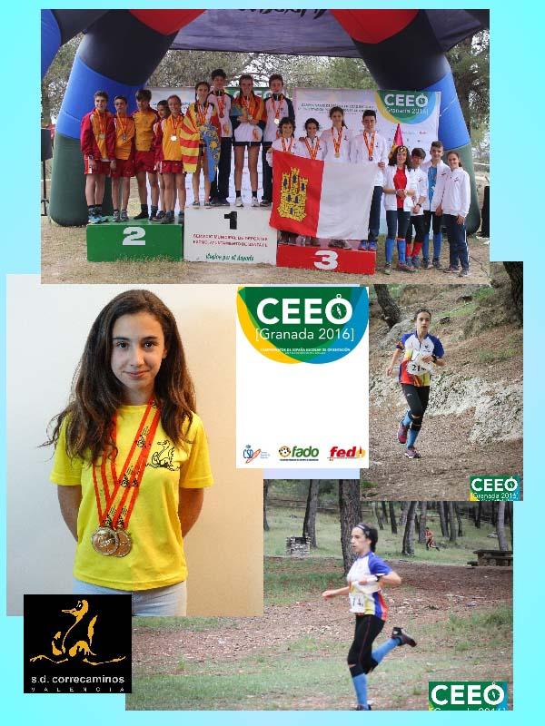 Collage_campeonato_nacional_Alicia