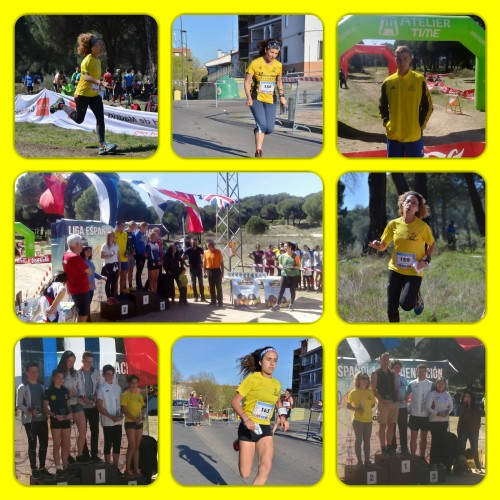 Trofeo_Martin_Kronlund_Fotor_Collage