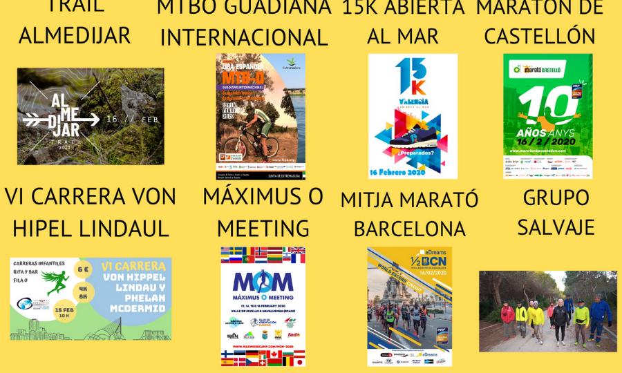 NUESTRO MEDIO MARATÓN Y MARATÓN RECONOCIDOS COMO LOS MEJORES DE ESPAÑA (7)